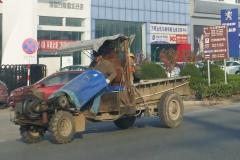 Transport-8