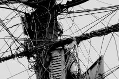 vernetzt